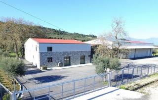 Lianos Olive Mill Kamarew, Aigio - Ελαιοτριβείο Λιανός Καμάρες Αιγιαλείας