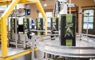 Ελαιόλαδο - Olive Oil